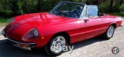 2 Specchietto Esterno Specchio Ovale Alfa Romeo Spider 105 115 Giulia Alfetta Gt